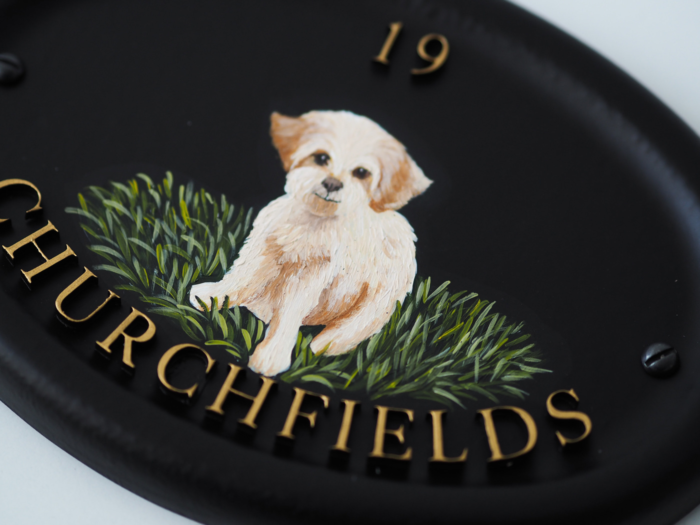Bichon Frise Flat Painted close-up. house sign