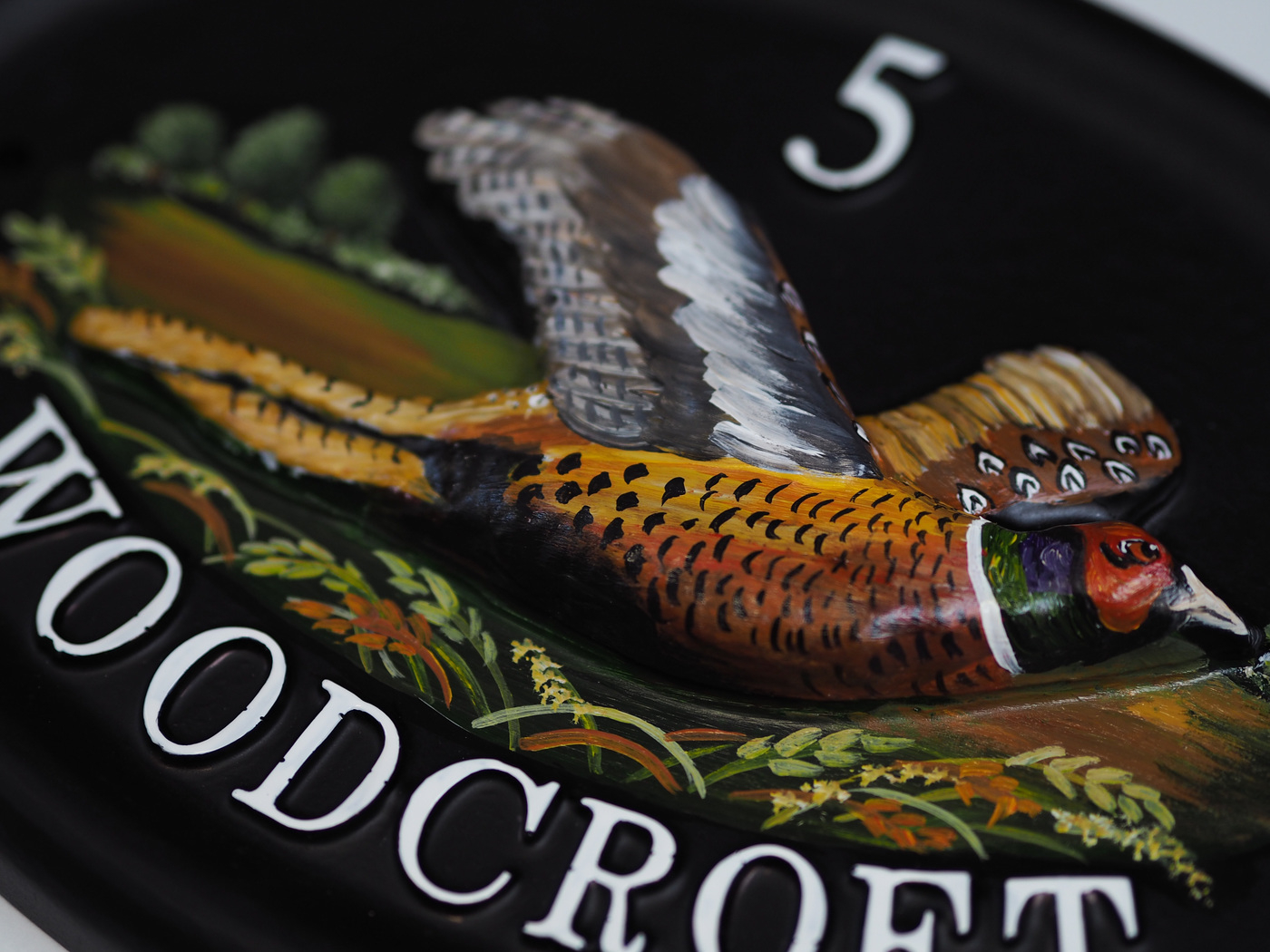 Pheasant Close Up house sign