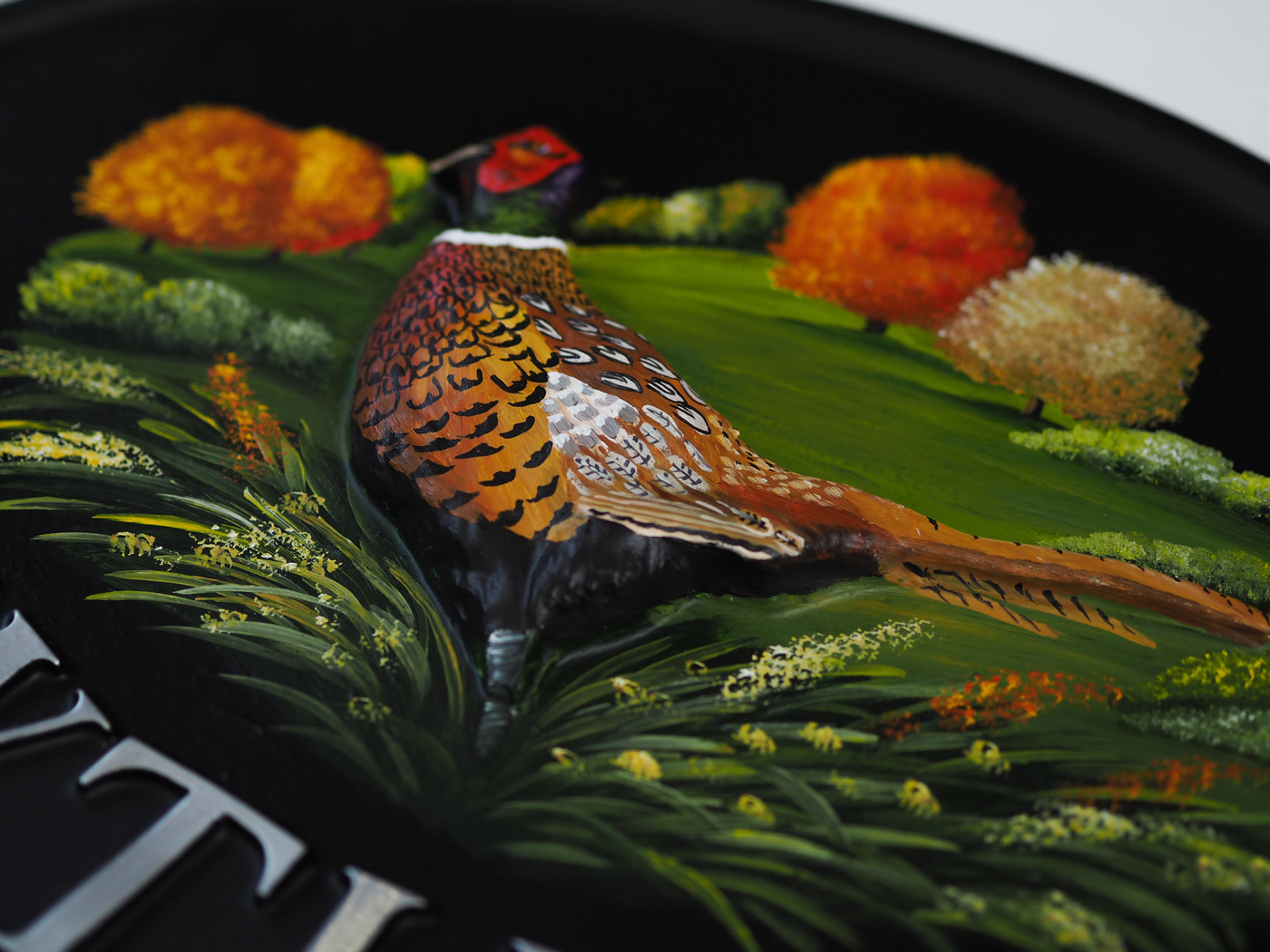 Pheasant Large Close Up house sign